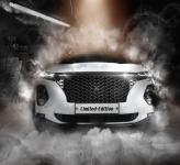 Решетка радиатора integral grille для Санта Фе 4 (Hyundai Santa Fe 2018 - 2019)